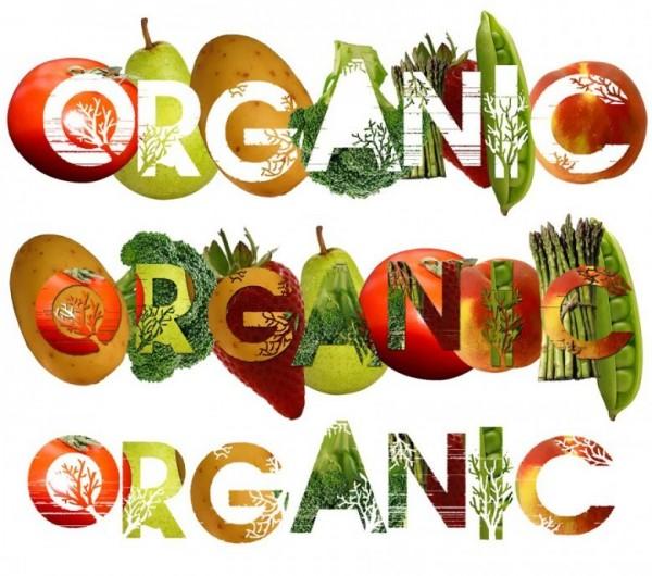 Качество и эффективность органической косметики