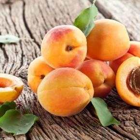 Вкусный и полезный абрикос